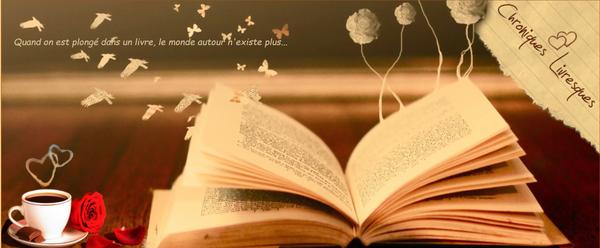 Les gardiens des portes, tome 3 : Amélie (Sonia Alain)