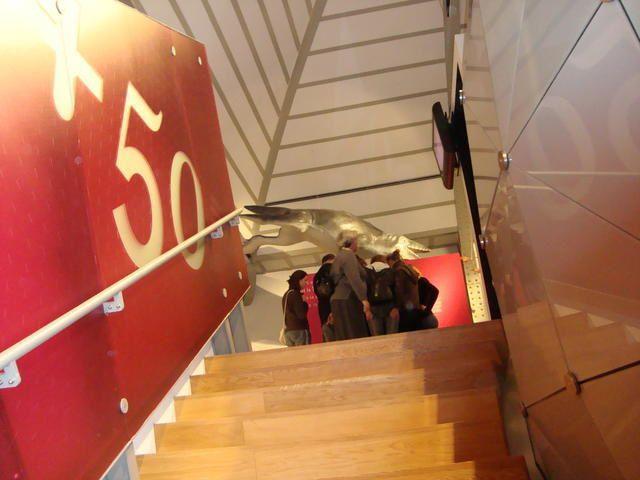 <p>IRScNB : la nouvelle Galerie de l'Evolution.</p> <p>Quelques photographies marquantes de notre visite en avant-première.</p> <p>Excellente visite !</p> <p>Phil « Fossil »</p>