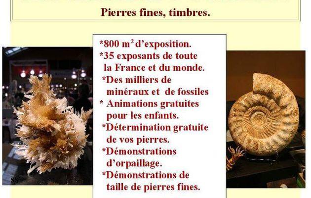35eme Bourse Exposition Minéraux bogny sur Meuse