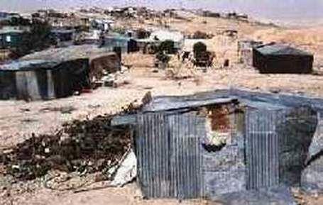 Admirez le spectacle des colons en action sur le sol Palestinien...