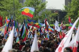 Les peuples originaires du Chili insistent sur leur participation au processus constituant