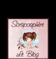 Le blog de la Scraposphère