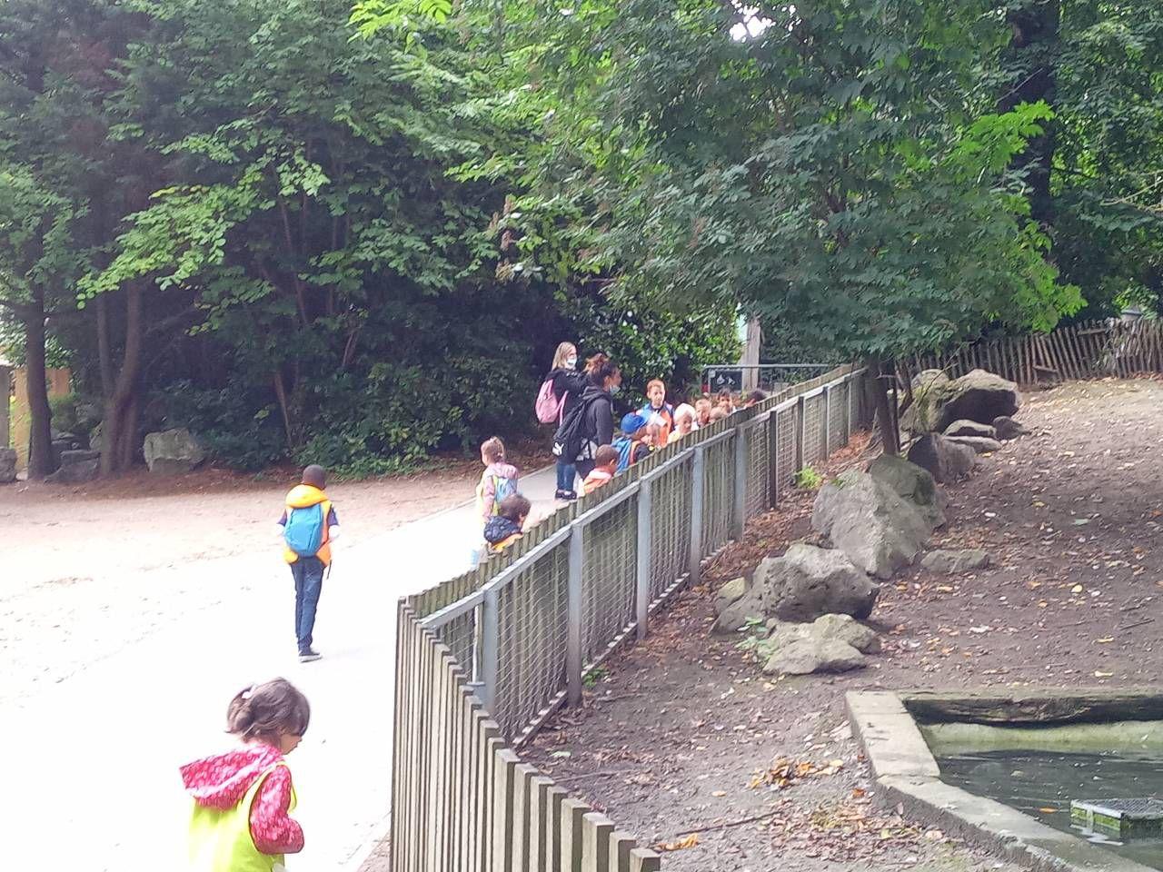 Condorcet-Mat-Zoo de Lille