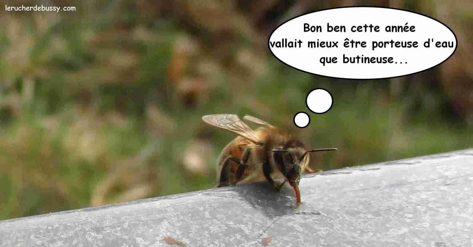 Humeur d'une petite abeille