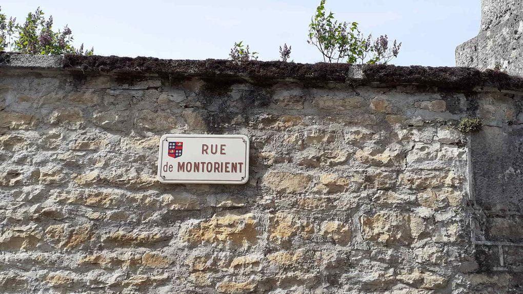 Portes ouvertes chez Point à point à Courbouzon, 19 et 20 juin 2021