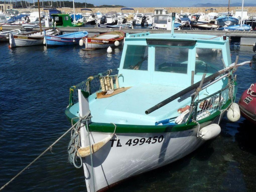 ROUMPI  TL 499450 , dans le port du Brusc le 30 avril 2014
