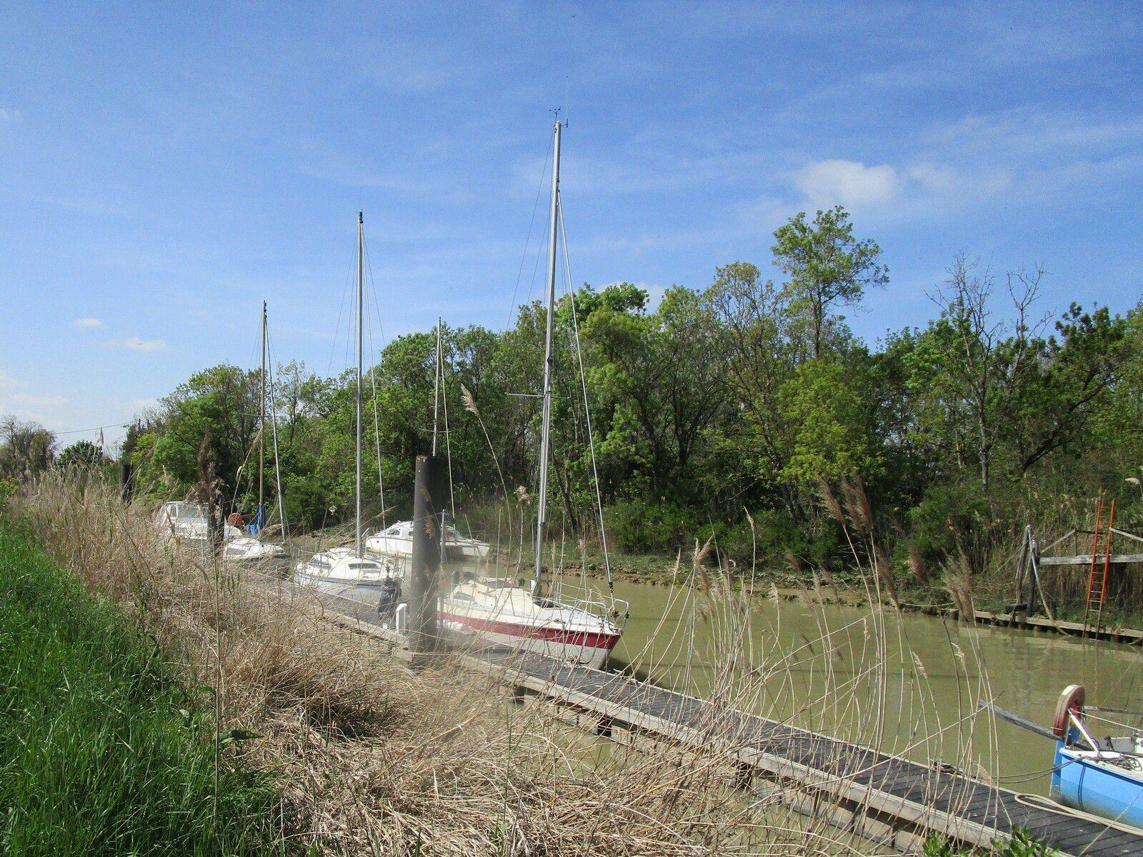 Du côté de la rivière à VTT
