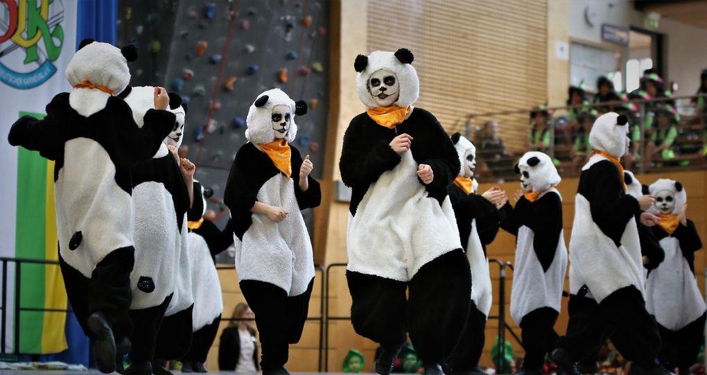 """12. FG Versbach - """"Pandas"""" - 390"""
