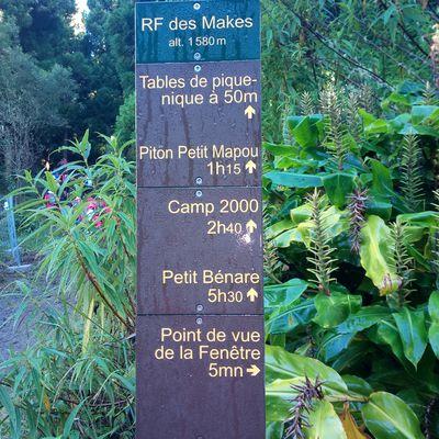 Les Makes : Petit Mapou-Camp 2000 -  28 mars 2021