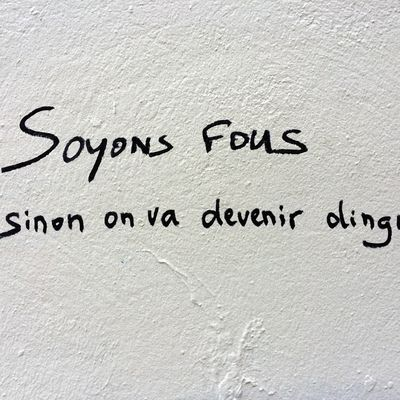 Soyons fous, sinon on va devenir dingues