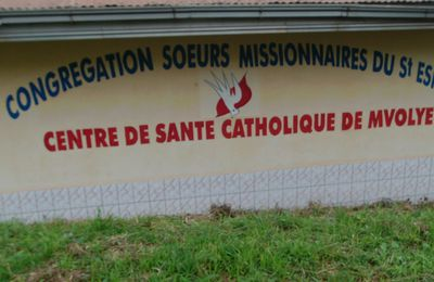Mission CAMEROUN, suite de l'expédition du 10 2014