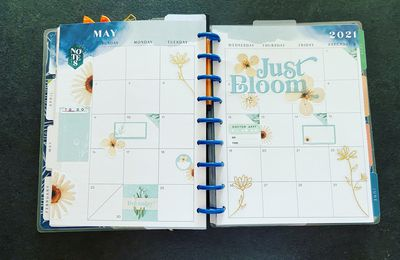 Plan with Me: Classic happy planner_ Vue mensuel Mai