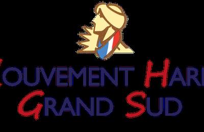 """Communiqué suite au rapport présenté par Benjamin Stora du """"Mouvement Harki Grand Sud """""""