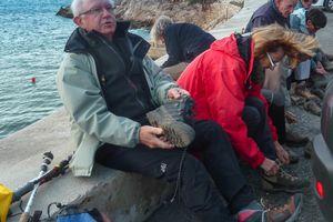 Callelongue-Calanque de Marseilleveyre le 6 janvier 2014