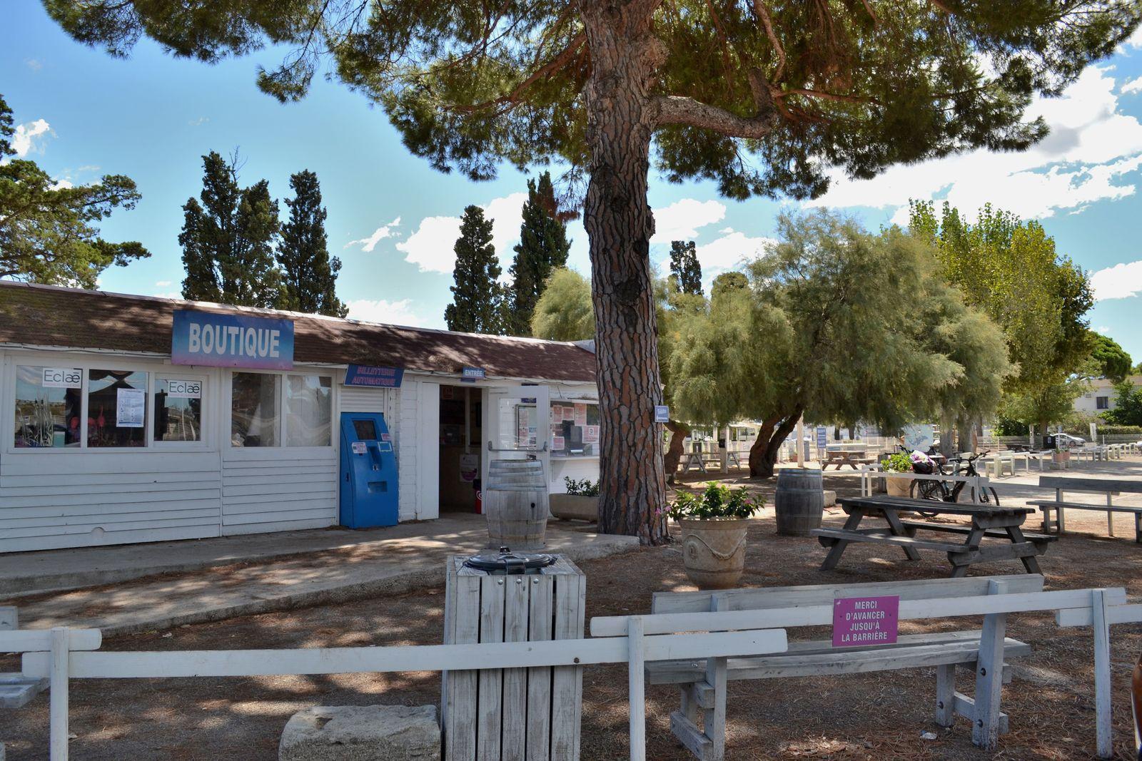 Visite salée au Salin d'Aigues-Mortes!