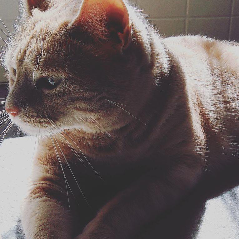 Diaporama 📸 Oliver a 2 ans 🎂