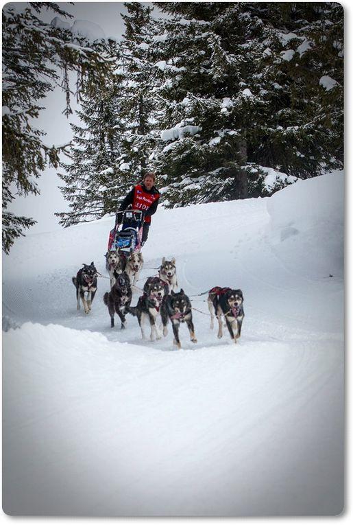 Le regard des photographes Eric Roustand et Jérôme Lardat sur la Grande Odyssée Savoie Mont Blanc 2013