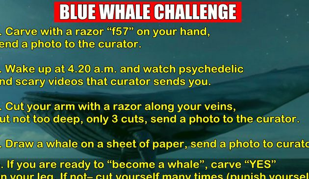 What You Need To Know About Blue Whale Challenge Dare Game