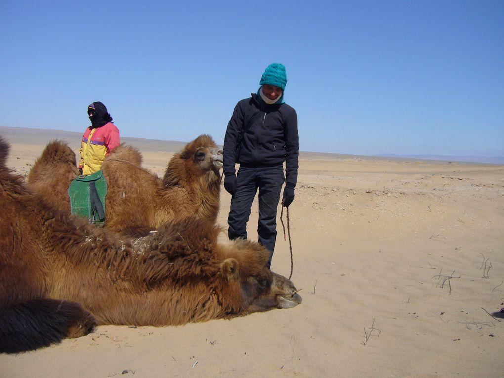 Album - 11 : Mongolie  (Suite)