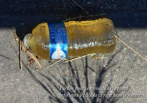 Incivisme sur la route : quand les conducteurs pissent dans des bouteilles...et les balancent sur le bas-côté
