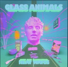 💿 GLASS ANIMALS EN RÊVE