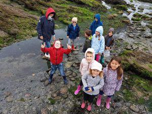 Quelques animaux prélevés le matin par les enfants : Anémone de mer, Lièvre de mer, Monodontes...