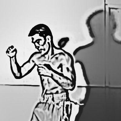 Schattenboxer auf Boxen1 - Folge 2