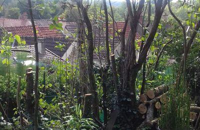 Les Jardins par dessus les toits