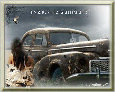 PASSION DES SENTIMENTS - PASSION DES SENTIMENTS RECUEIL SUR THEBOOKEDITION  PAR TONY RICHARD POÉTIQUEMENT PARLANT POÉTIQUEMENT PENSANT