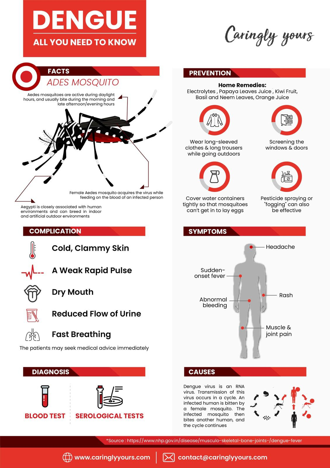 All You Need To Know About Dengue - Caringlyyours