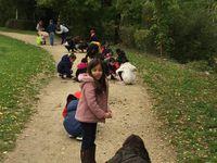 La forêt de Bondy par les élèves de CPB