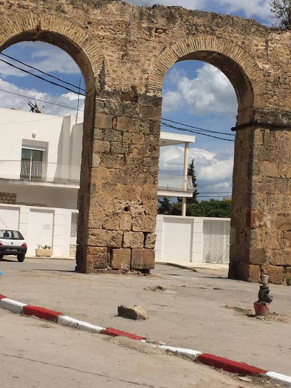 Nous n'avons pas de pétrole...mais nous avons des monuments, ça peut faire l'affaire. Pr Neziha Gouider-Khouja