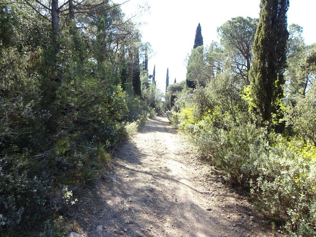 Mercredi 7 avril : Une virée sur les pistes
