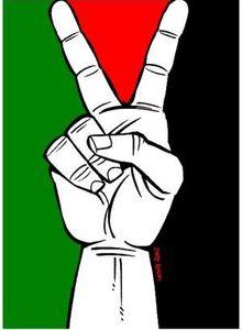AG 2014 du MRAP. Résolutions Palestine (1/3)