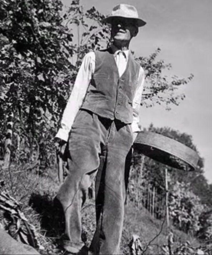 «Hermann HESSE (1877-1962),  Prix Nobel de littérature, un loup des steppes et son Siddhartha» par Amadou Bal BA - http://baamadou.over-blog.fr/