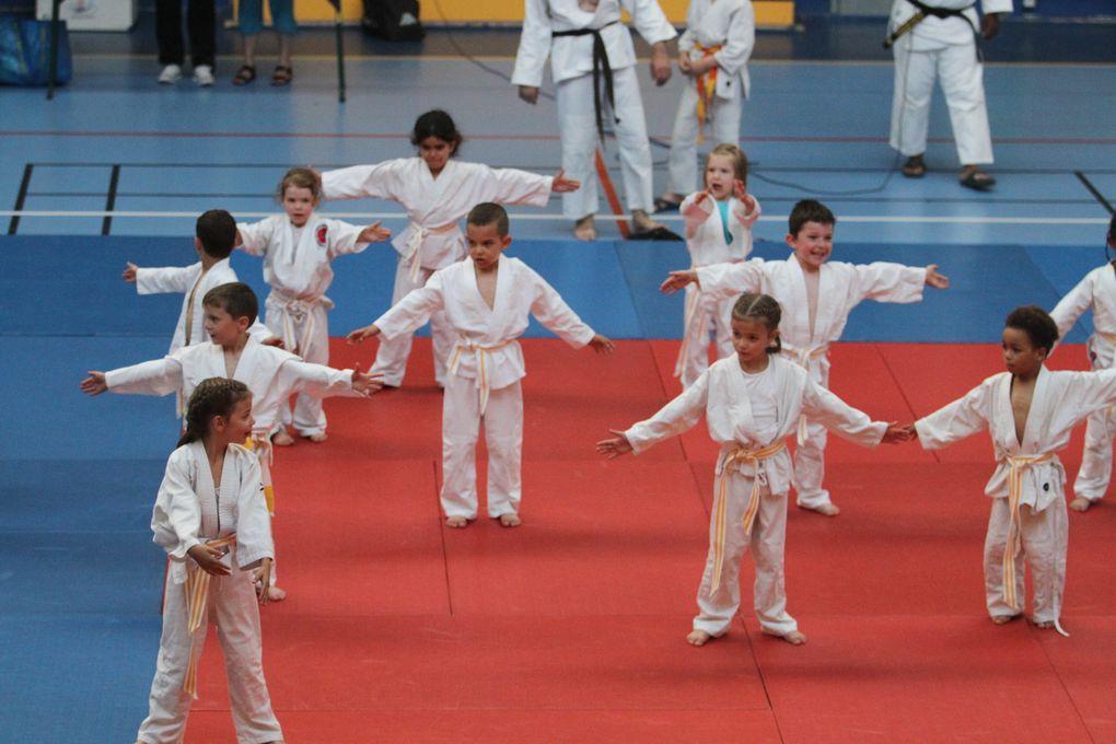 L'ALVP Judo a parachevé sa saison 2017/2018 par son traditionnel gala
