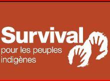 Survival : au Pérou, un énorme projet gazier, Camisea, menace les indiens