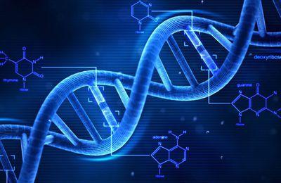 Voyage sur l'ADN