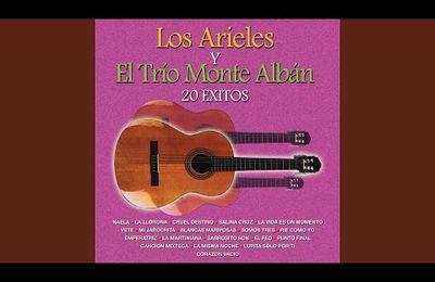 La Vida Es un Momento · Los Arieles y El Trio Montealban