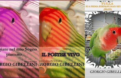 «Adagiato nel mio sogno piumato», serie di racconti in tre volumi in e-book di Giorgio Gibellini - Segnalazione Libri