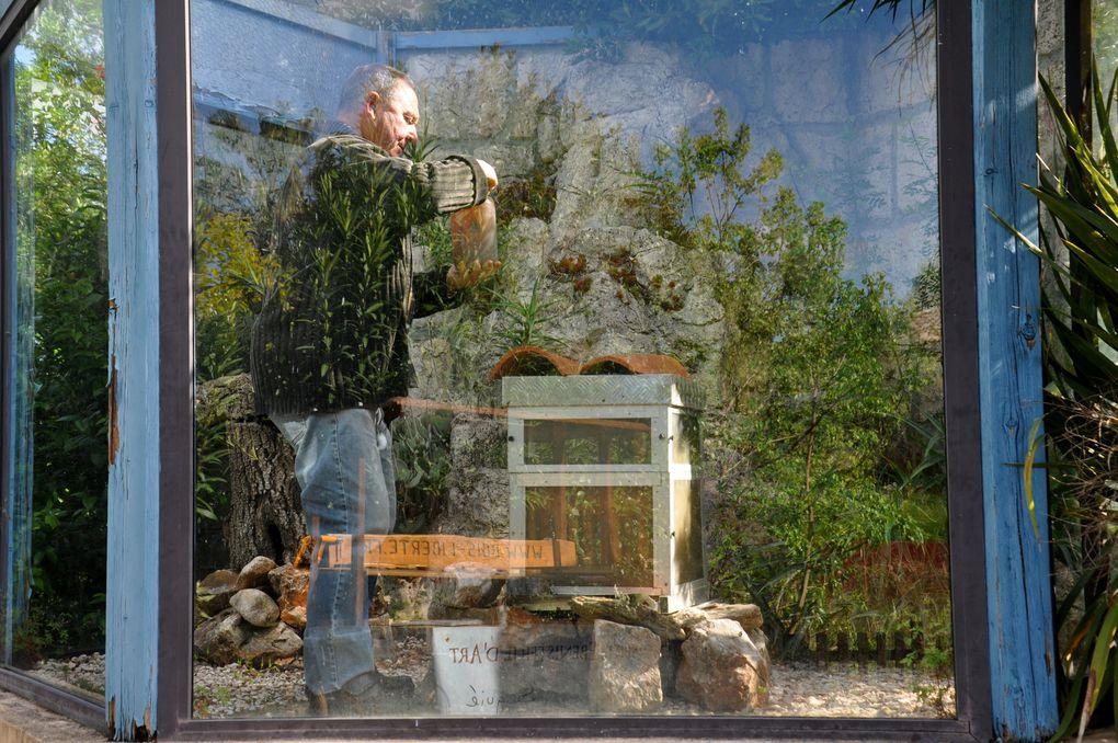 La ruche vivante (4 photos)