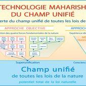 Champ Unifié quantique et Conscience transcendantale