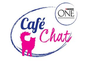 Photo Purina One Café Chat