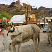Oatman | Lost In The USA