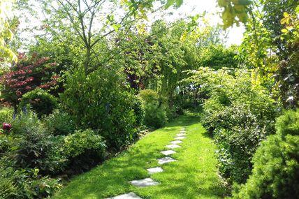 Le jardin de Mai après une bonne  pluie il est luxuriant.....