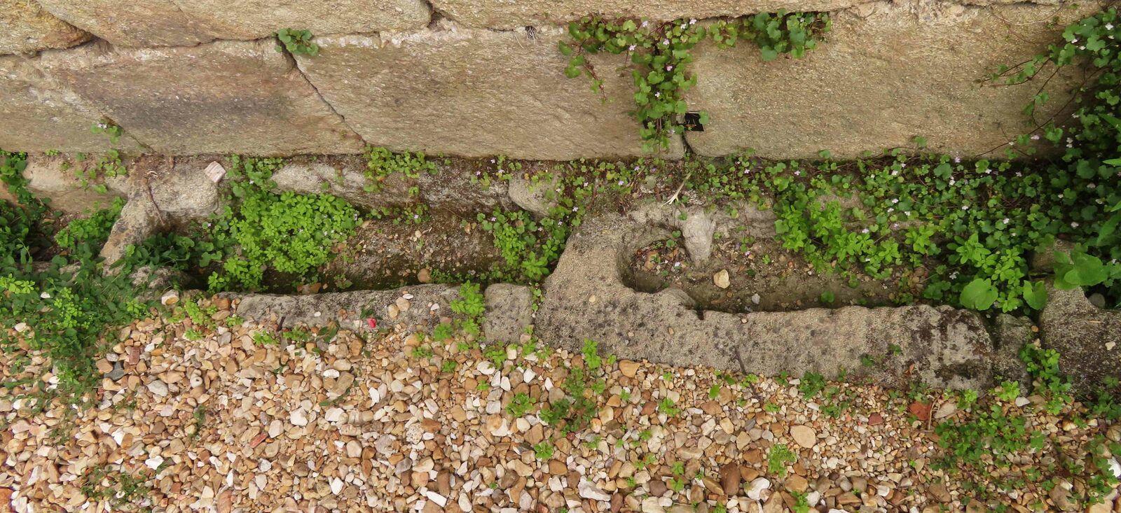Au pied du mur de l'église de St Jean de Côme. Voir explication dans image suivante