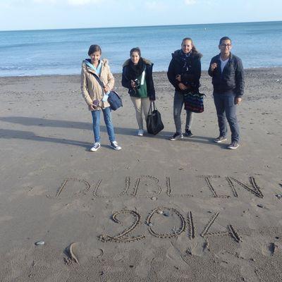 Dublin 4+1