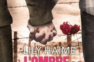 À l'ombre de nos secrets de Lily HAIME