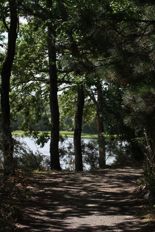 Vues prises le 26 août 2012 autour du grand étang de Vioreau, à Joué-sur-Erdre. Cette réserve d'eau, annexe du canal de Nantes à Brest, et réalisée de 1811 à 1835, devait contribuer - commme l'étang voisin de la Provostière à Riaillé, à