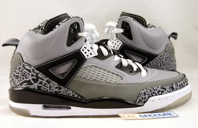 Nike Air Jordan Spiz' ike Cool Grey